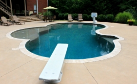 Gunite Pool with Tanning Ledge, Diving Board, & Basketball Goal