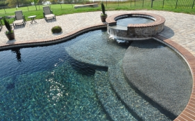 Freeform Pool with Spa, Scupper and Tanning Ledge